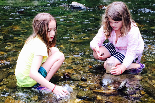The Nature Museum Offers Exciting Summer Camps for Budding Naturalists