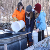 March Maple Syrup-Sugaring Season